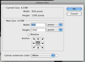 Canvas size dialog
