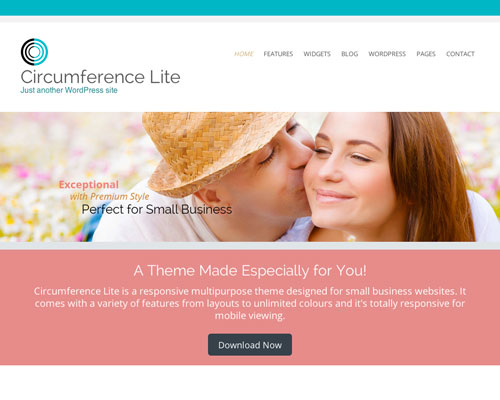 Free WordPress Circumference Lite Responsive Business Theme Screenshot