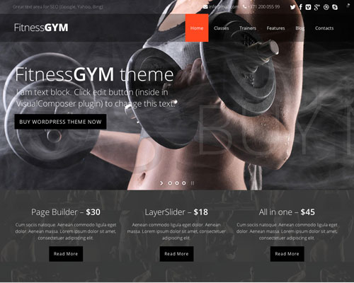 Premium Fitness Gym Responsive WordPress Business Theme Screenshot