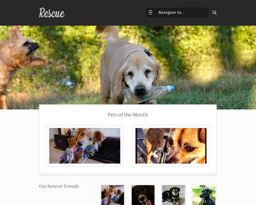 Premium WordPress Rescue Responsive Business Theme Screenshot