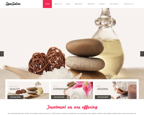 Free WordPress Spa Salon Responsive Business Theme Screenshot