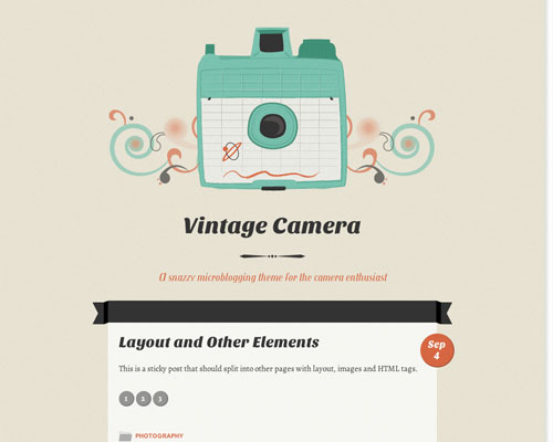 Free WordPress Vintage Camera Responsive Business Theme Screenshot